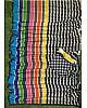 Multicolor printed strip georgette saree
