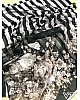 Black and white strip digital printed partywear saree