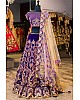 Blue velvet heavy embroidered wedding lehenga choli