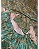 Rama organza embroidered with sequence work lehenga choli