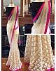 white mono net embroidered partywear saree